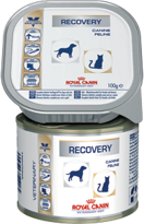 Royal Canin (Роял Канин) 0.195 кг Рекавери Канин/Фелин ж/б